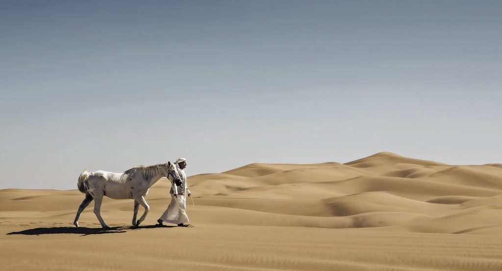 An Arab is walking his horse through the desert.