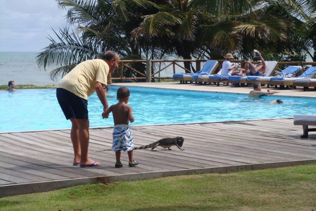 Matheus bem pequenininho no Tivoli Praia do Forte (resort) com seu avô observando as iguanas